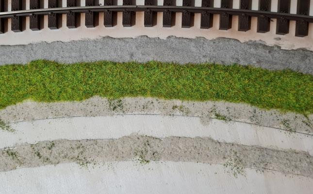Grasfläche zwischen Planumssand und Feldweg