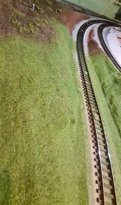 Die Flanken erhalten ihre Grasfasern