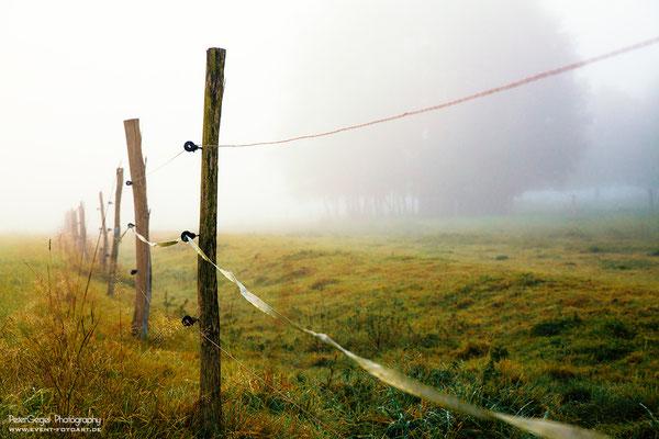 Landscape ©Peter GegelW