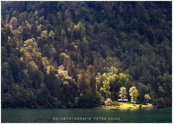 Heimatfotos - Berchtesgaden - 110