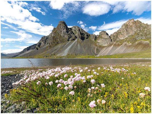 Landschaft - Island - 70
