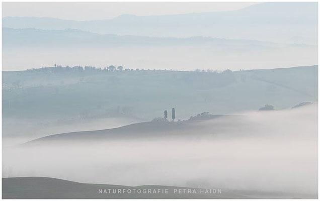 Galerie - Landschaft - Toskana - 33