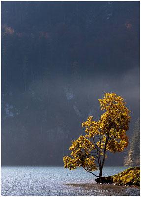 Heimatfotos - Berchtesgaden - 38
