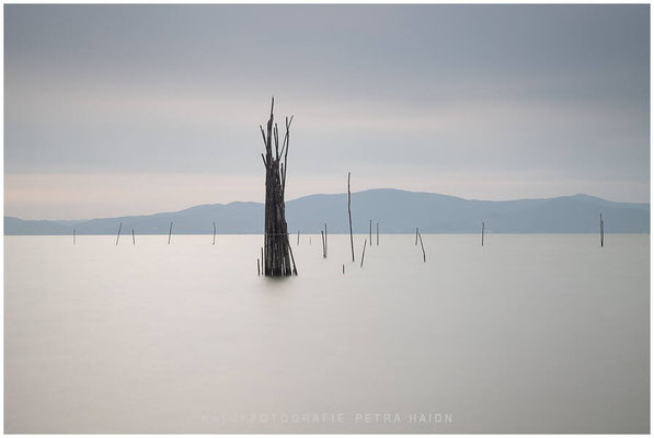 Galerie - Landschaft - Toskana - 01