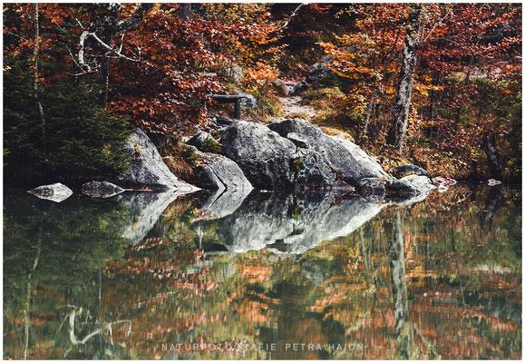 Galerie - Wasserwelten - 36