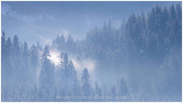 Heimatfotos - Berchtesgaden - 126