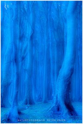 Galerie - Abstrakt - 03