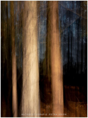 Galerie - Abstrakt - 05