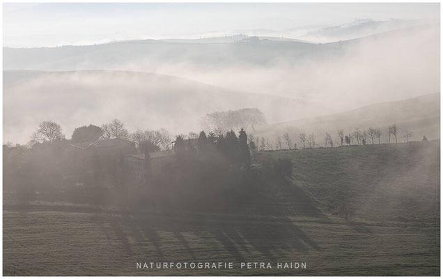 Galerie - Landschaft - Toskana - 41