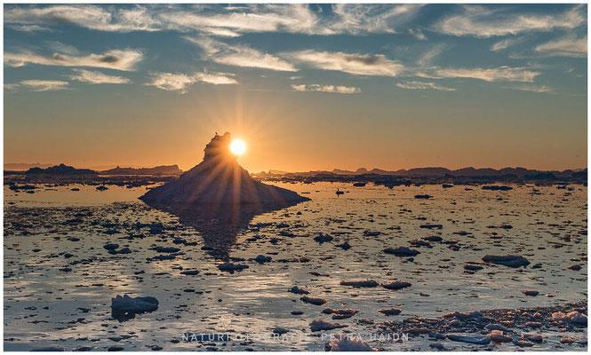 Galerie - Landschaft - Grönland - 13
