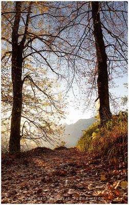 Heimatfotos - Berchtesgaden - 39