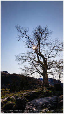 Heimatfotos - Berchtesgaden - 36
