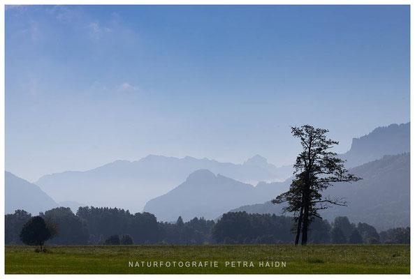 Landschaft - Deutschland - 46