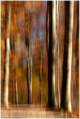 Galerie - Abstrakt - 09