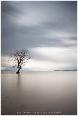Galerie - Landschaft - Toskana - 06