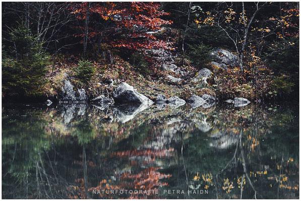 Galerie - Wasserwelten - 37