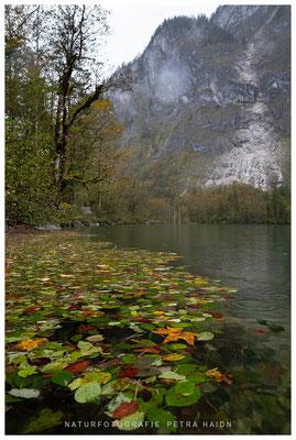 Landschaft - Deutschland - 25