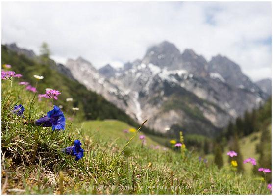 Heimatfotos - Berchtesgaden - 161
