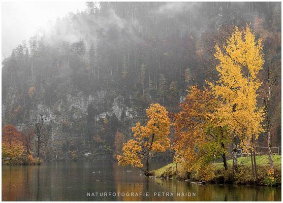 Heimatfotos - Berchtesgaden - 37
