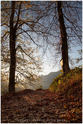 Landschaft - Deutschland - 35