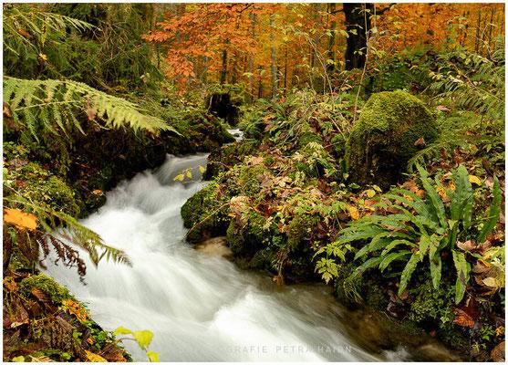 Heimatfotos - Berchtesgaden - 34