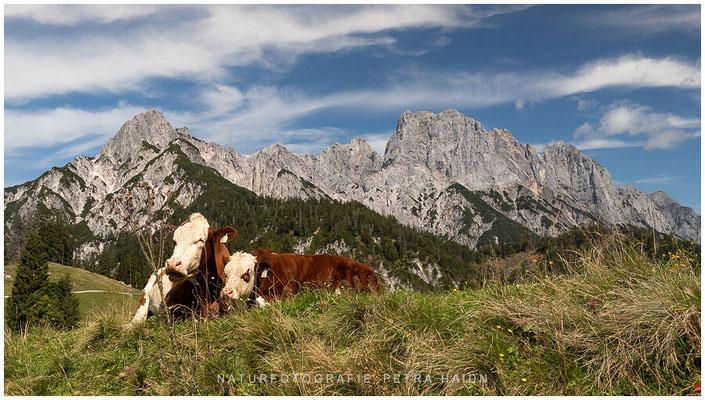 Heimatfotos - Berchtesgaden - 84