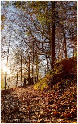 Heimatfotos - Berchtesgaden - 40