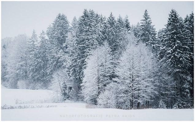 Heimatfotos - Berchtesgaden - 10