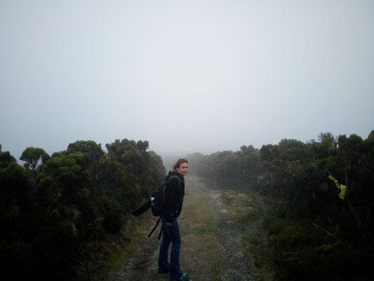Wanderung in der Wolke