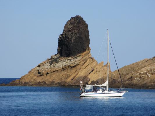 Pantera liegt geschützt im Vulkankrater