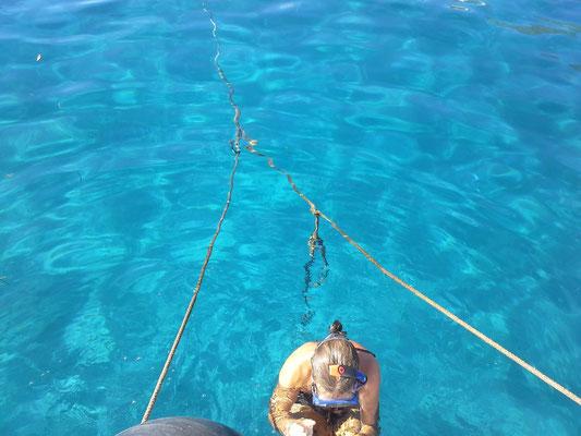 das Hafenwasser am Kap...zu klar um nicht zu schnorcheln
