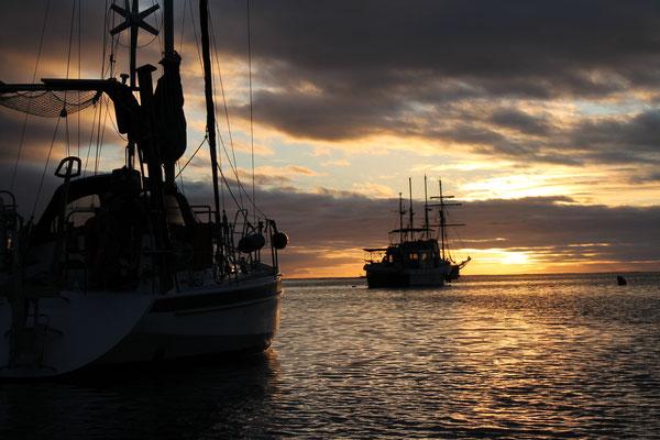 Ankern vor Isla Caleta III