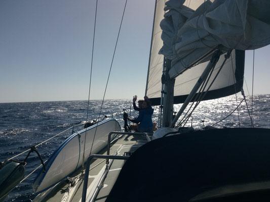 Whalewatching ohne Wale aber dafür mit Spaß