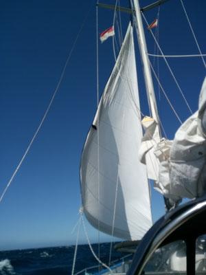 Strammer Wind auf dem Weg nach Teneriffa reisst ein Lochs ins Vorsegel