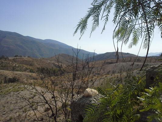 auf dem Weg in die Sierra Nevada