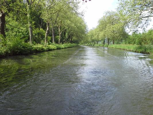 Flussallee