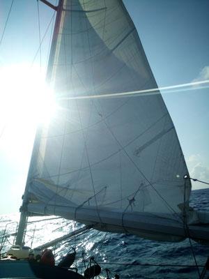 Halber Wind Richtung Festland
