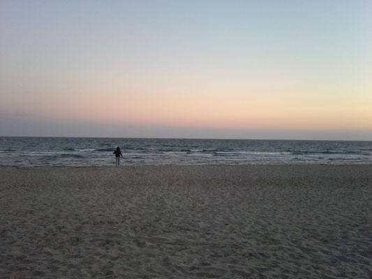 In Saintes Maries de la Mer erwartet uns ein wunderbarer Strand