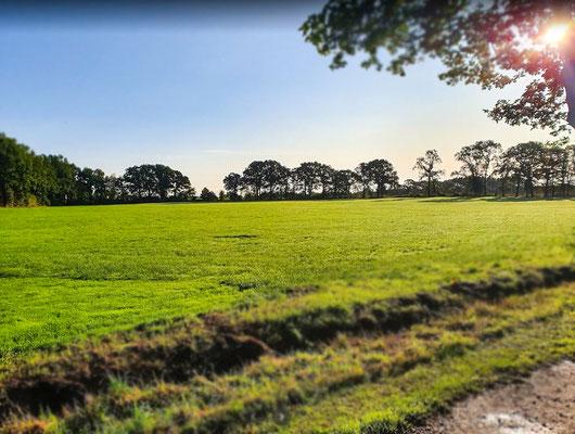 Auf unserem Hof in Fredenbeck-Schwinge bieten wir Ihnen: Stellplatzvermietung, Heuverkauf, Monteurwohnung zur Miete und landwirtschaftliche Dienstleistungen an.