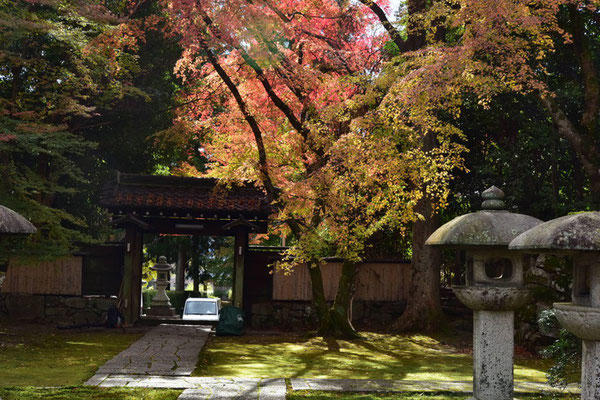 慈眼堂(山門の向こうに紅葉が見えています)