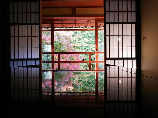 二階からの紅葉