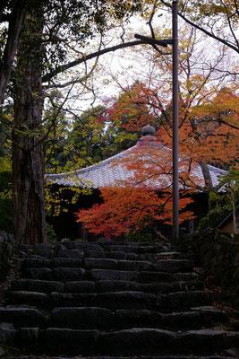 慈眼堂から滋賀院に向かう階段を下から見上げる