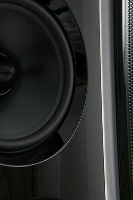 Detail Bass