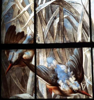 Les martins-pêcheurs font partie des oiseaux à la mode fin 19ème.