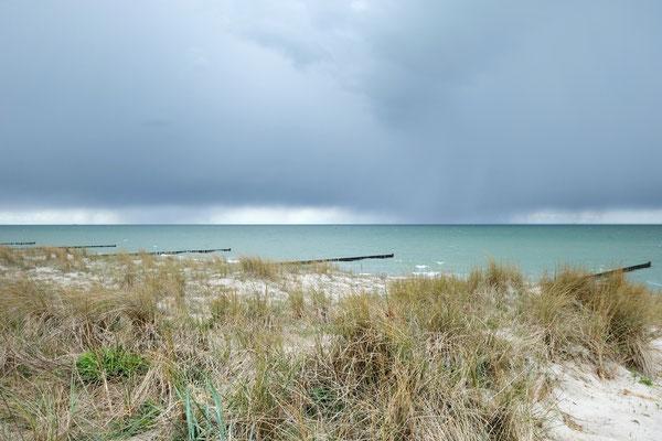 dieartige // SOMMERPAUSE.. mit HEIMATURLAUB // der Strand von Ahrenshoop