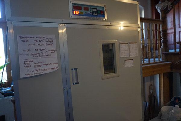 Unser Brutautomat