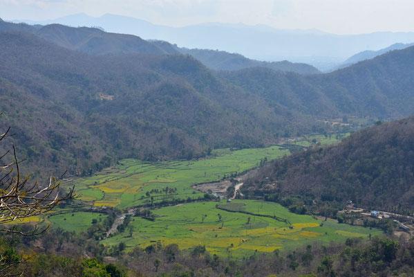 Rijstvelden op Lombok in de buurt van Tetu Batu
