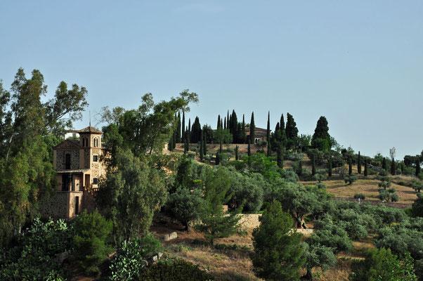 De cipressen die doen denken aan Toscane