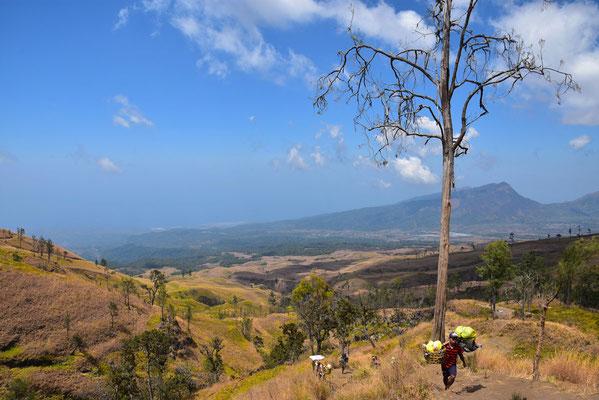 Landschap rondom Gunung Rinjani