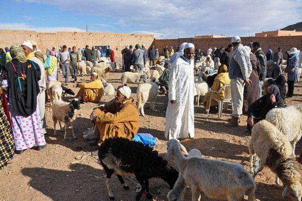 De schapenmarkt in Tinjedad